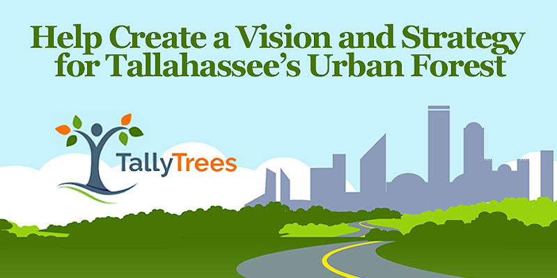 Take the Tally Trees Survey