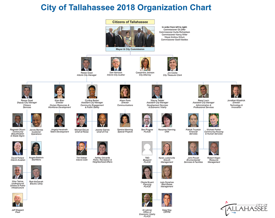 A chart depicting the City of Tallahassee's organizational structure in 2018