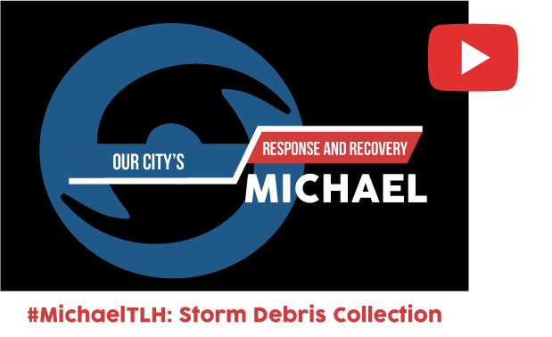 Watch the Hurricane Micheal Storm Debris Video on Youtube