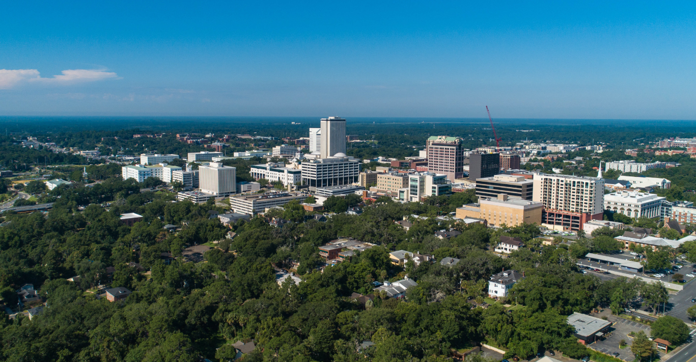 The City of Tallahassee