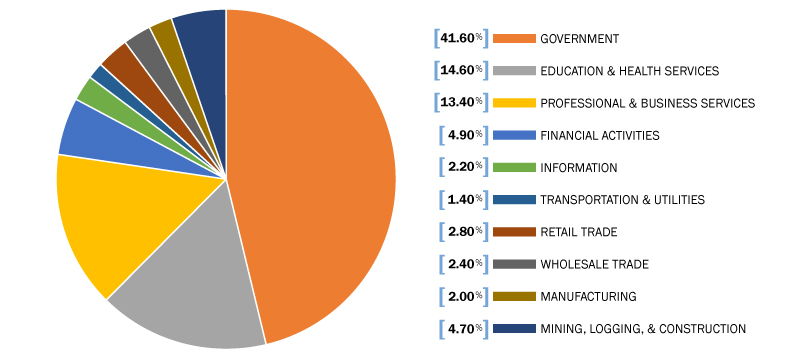 Employment By Sector
